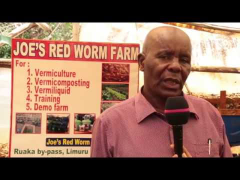 RED WORMS: Different type of compost available for farmers.