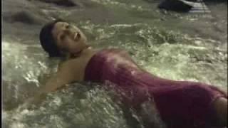 Aathule Meen Pudichu  Video Song   Aatukkara Alamelu   Sivakumar & Sripriya   P. Susheela