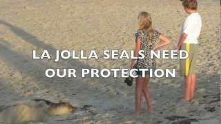 Young Girl Kicks Sand in Seal
