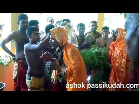 ashok passikudah.com