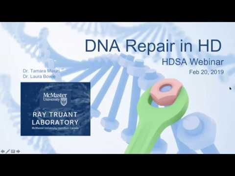 WEBINAR: DNA Repair In Huntington's Disease