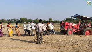 Mahindra 575 Tractor Stuck in River Sand with Tractor Trailer / Farmers Pulling out Tractor