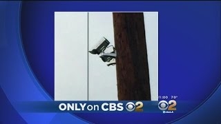 Only On 2: Mystery In Silver Lake -- Who Posted Phony Traffic Signs And Cameras To Get Drivers To Sl