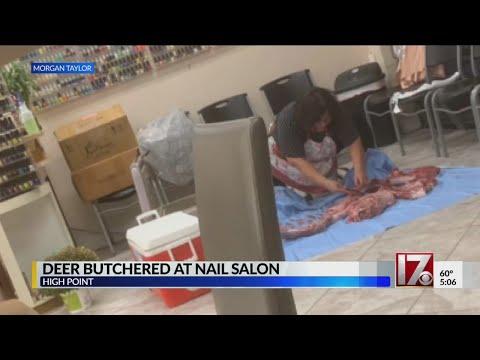 AJ - #Bizarre: Nail Tech Butchers Deer on Salon Floor