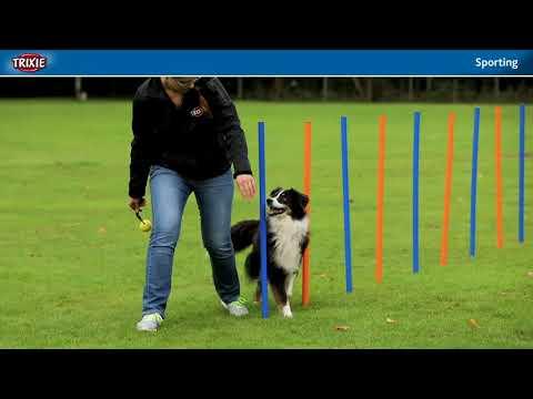 Die neue SPORTING Serie von TRIXIE für aktive Hundehalter und Profisportler