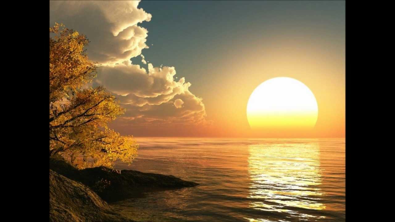 The rising sun.co.za
