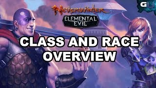 Neverwinter - Class and Race Overview