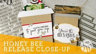 Honey Bee Close-Up + Shaped Cards