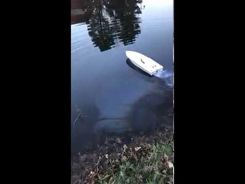 Team Enforcer Offshore RC Boat Dead Battery Incident and Crash