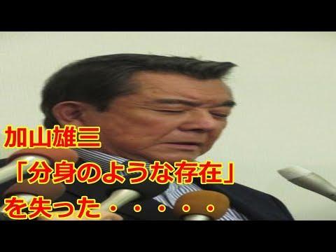 加山雄三、光進丸が焼けて涙「分身のような存在」(日刊スポーツ)   Yahoo!ニュース