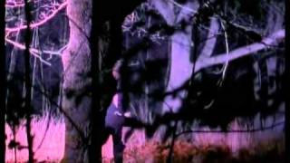 Recoil - Faith Healer (Official Video)