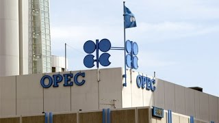 Why Saudi Arabia Matters Most at OPEC Meeting