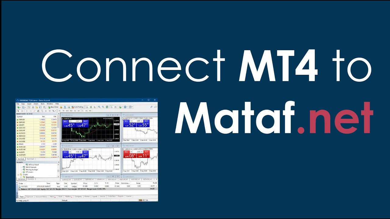 Connect Mt4 To Mataf Net Youtube