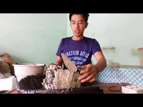 Cara mudah membuat tiruan batu karang dari sterofoam