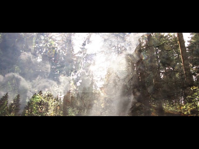 Pantha du Prince - The Crown Territory (Official Video)