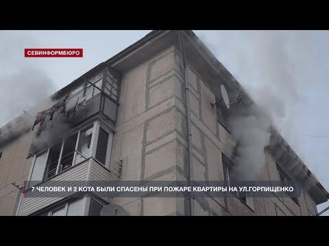 Двух котов и семь человек спасли севастопольские пожарные