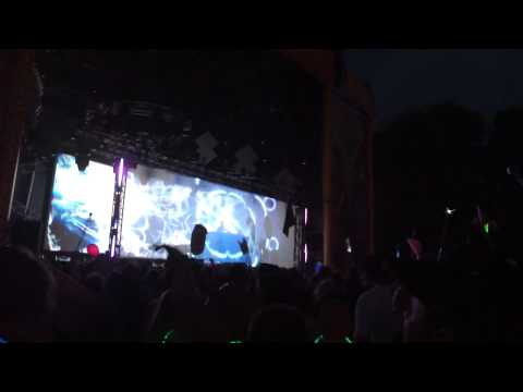 Flying Lotus - Electric Forest 2014