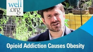 Opioid Peptide Addiction Causes Obesity | Well.org
