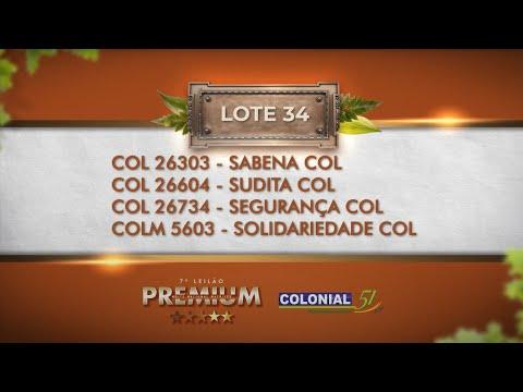 LOTE 34   COL 26604, 26734, 26303, COLM 5603