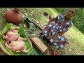 Chicken Recipe ❤ Spicy Black Chicken Curry prepared in my Village by Grandma