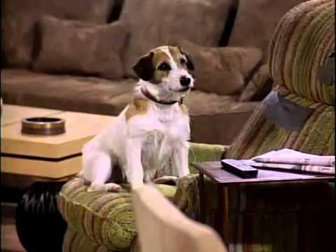 What S The Dog S Name On Frasier