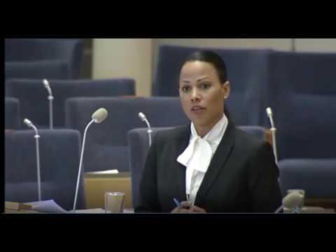 Alice Bah Kuhnke MP får skämmas som en hund i rikdagen KFC Hot News Del 2