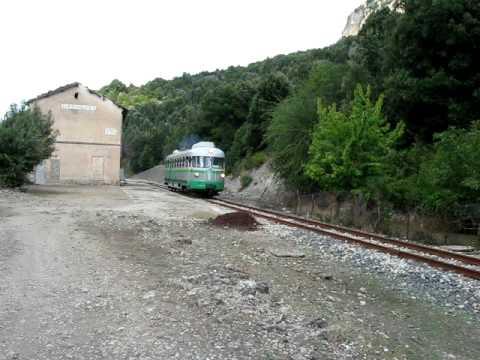 Treninoverde 1