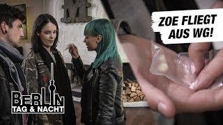 Eule wirft Zoe aus der WG #1813 | Berlin - Tag & Nacht