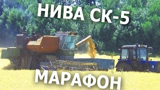 Марафон: Нива СК-5 уборка урожая пшеницы. Жара за +50 градусов  #СельхозТехника_ТВ №36