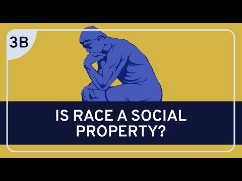 PHILOSOPHY - Race: Racial Ontology #3b (Sociohistorical Theories of Race)