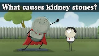 What causes kidney stones? | Smart Learning for All