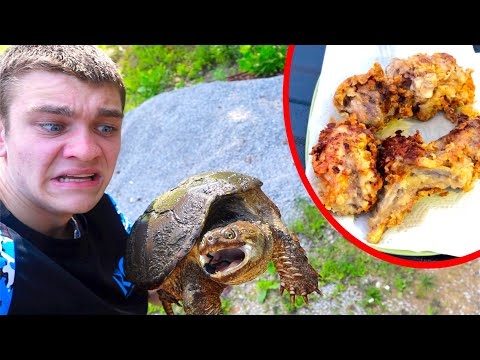 SNAPPING TURTLE! (Catch Clean Cook)