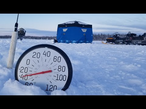 Fishing At -40 Degrees - Massive Trout Catch & Cook - Eating Raw Seal Meat