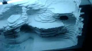 building terrarium