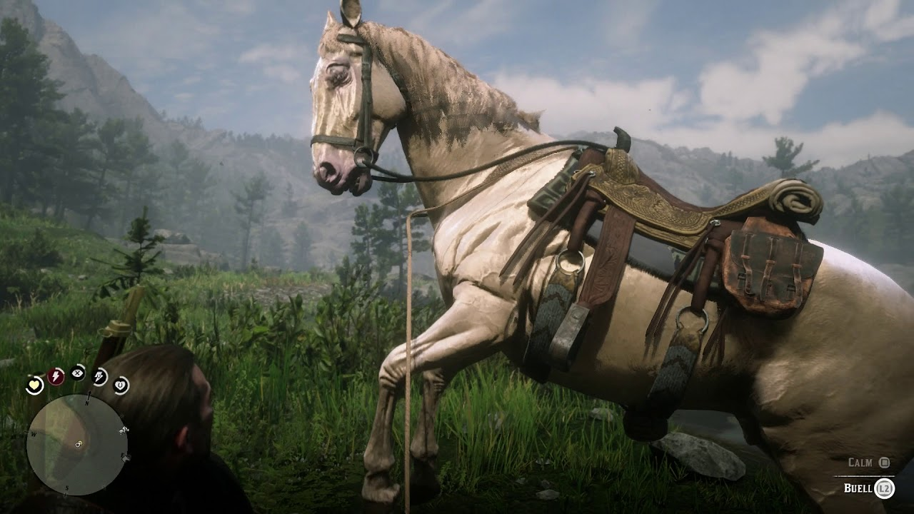 Red Dead Redemption 2 The Veteran Calm Lead Buell Horse Back