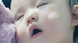 [육아 브이로그] 쉽지않은 13개월 아기 육아/ 카네이…