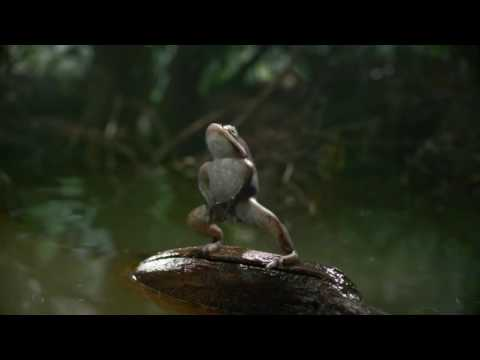 Mountain Dew Kickstart -  Freak Chain Ad (HD)
