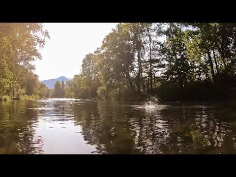 Mini Jornada De Pesca Al Hilo (Verano)