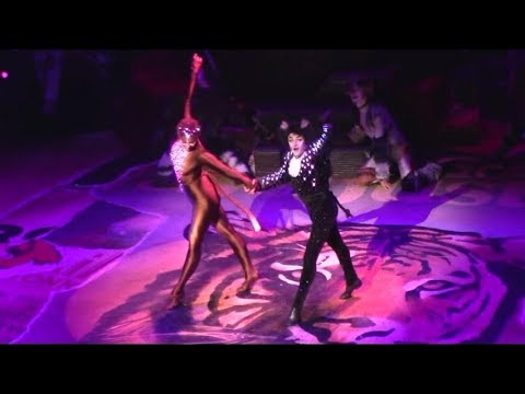 Mr Mistoffelees Dance Break (Broadway Revival)