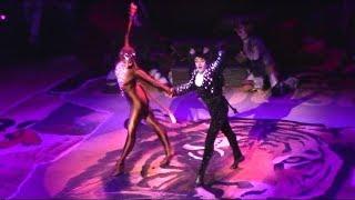 Mr Mistoffelees Dance Break (Broadway Revival)