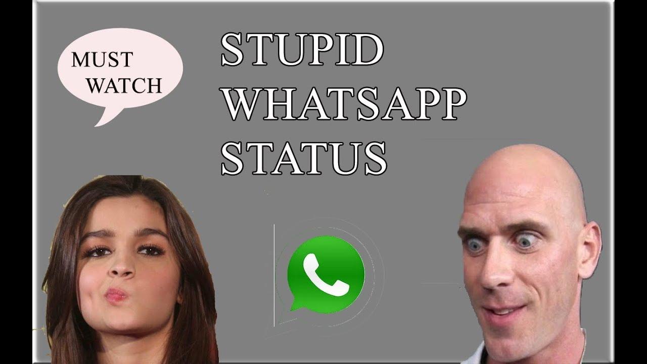 Whatsapp Roast Stupid Whatsapp Status Youtube