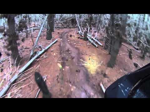 Majura Pines 2 thumbnail