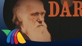La muestra más completa de Charles Darwin | Noticias de Entretenimiento