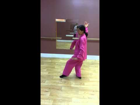 Tai chi at Pure Symmetry Fitness