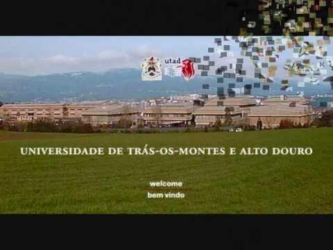 Vila Real Cidade