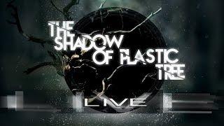 "Monsieur Grandin Live "" The shadow of Plastic tree"" LP 2015"