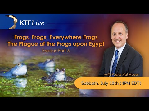 KTFLive: Frogs, Frogs, Everywhere Frogs - The Plague of the Frogs upon Egypt, The Exodus: Part 6