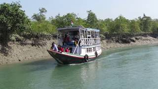 Sundarban Tour। Forest of Mystery। Discover The Wild India - part 1