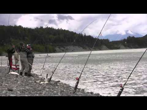 Smithers Events, McBike Fishing Report For June 29, 2014 - Terrace Skeena River
