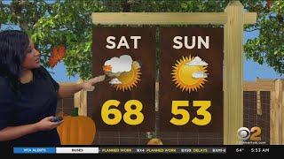 New York Weather: Friday Morning Forecast